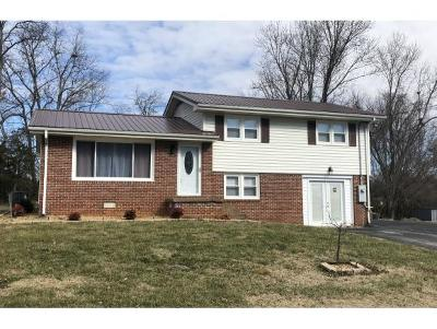 Greeneville Single Family Home For Sale: 111 Mayor Ave