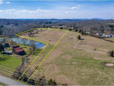 Washington-Tn County Residential Lots & Land For Sale: 543 Hairetown Rd