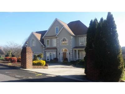Kingsport Single Family Home For Sale: 629 Red Oak Plantation Rd