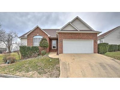 Kingsport Single Family Home For Sale: 1104 Cooks Terrace