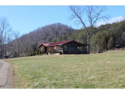 Rogersville Single Family Home For Sale: 144 Vaughn Road