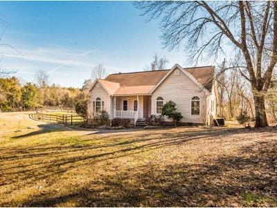 Bristol Single Family Home For Sale: 533 Springdale