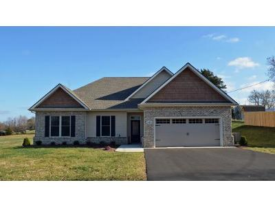 Jonesborough Single Family Home For Sale: 1222 Peaceful Dr