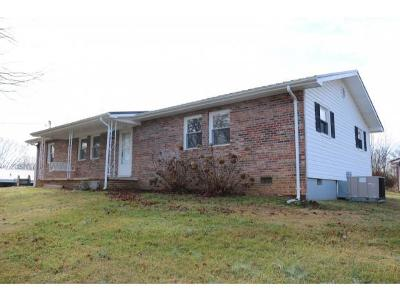 Greeneville Single Family Home For Sale: 456 Fairfield Dr