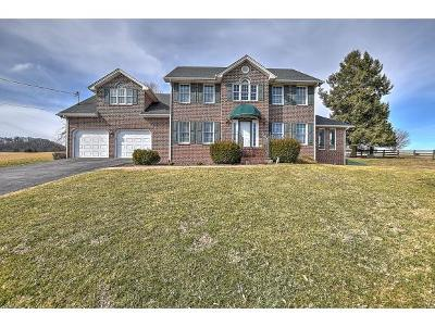 Bristol Single Family Home For Sale: 13253 Sinking Creek Rd