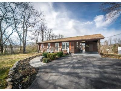 Jonesborough Single Family Home For Sale: 219 Couch Rd