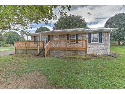 Greeneville Single Family Home For Sale: 41 Hillside Court