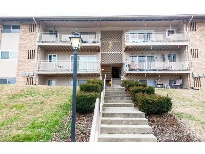 Bristol VA Condo/Townhouse For Sale: $46,850