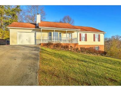Kingsport Single Family Home For Sale: 1606 Sky View Dr