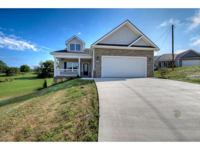 Piney Flats Single Family Home For Sale: 2145 Poplar Ridge
