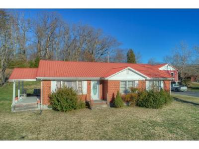 Rogersville Single Family Home For Sale: 233 Old Hwy 66