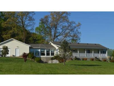 Single Family Home For Sale: 8095 Kingsport Hwy.