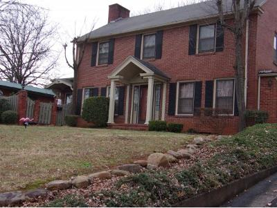 Johnson City Single Family Home For Sale: 207 East 8th Street