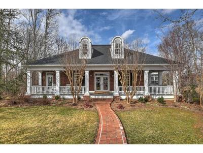 Greeneville Single Family Home For Sale: 380 Golf Trace Dr