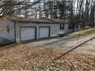 Jonesborough Single Family Home For Sale: 128 Holly Hills Rd.