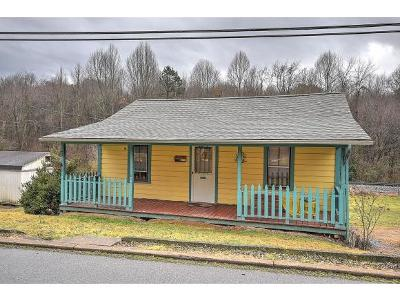 Jonesborough Single Family Home For Sale: 216 Spring St