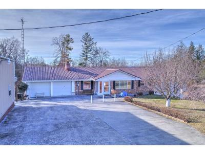 Single Family Home For Sale: 127 Bill Martin Rd