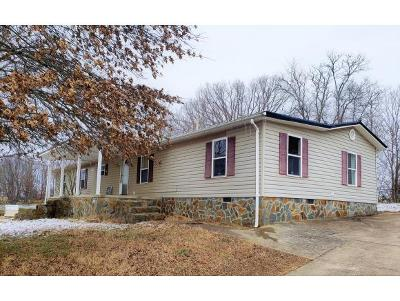 Greeneville Single Family Home For Sale: 74 Kidwell School Rd