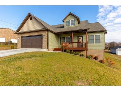 Gray Single Family Home For Sale: 190 Spurgeon Lane