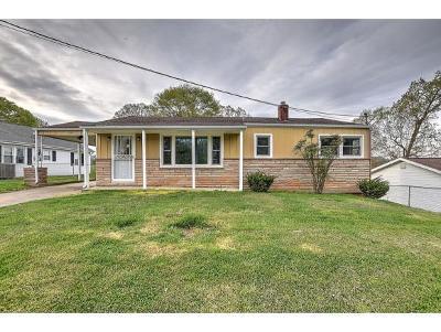 Hawkins County Single Family Home For Sale: 324 Holston Drive