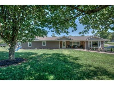 Greene County, Washington-Tn County Single Family Home For Sale: 201 Warren St