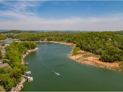 Johnson City Residential Lots & Land For Sale: 147 Lake Harbor Drive