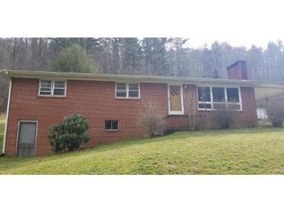 Single Family Home For Sale: 164 Barnett Hollow
