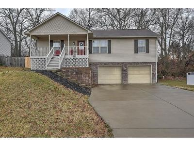 Gray Single Family Home For Sale: 422 Crystal Springs Circle