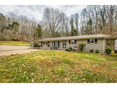 Single Family Home For Sale: 3825 Hemlock Park Drive