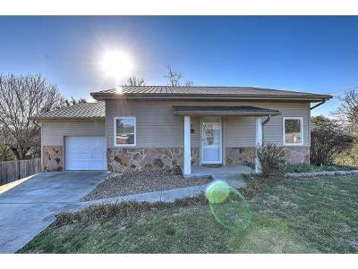 Greeneville Single Family Home For Sale: 300 W Sevier Hts