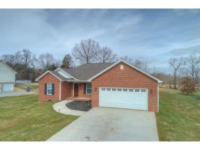 Single Family Home For Sale: 1772 Butterfly Ct