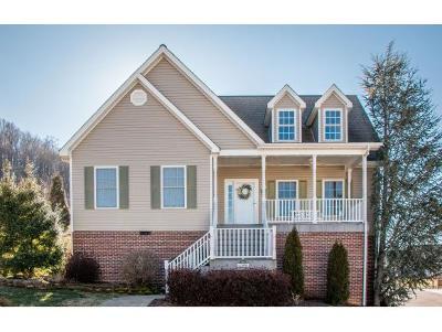 Bristol VA Single Family Home For Sale: $269,900