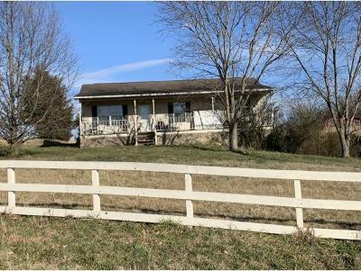Greeneville Single Family Home For Sale: 605 E Fork Rd
