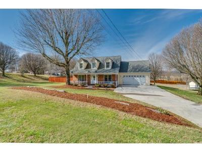 Jonesborough Single Family Home For Sale: 391 Gray Station Sulphur Spgs Road