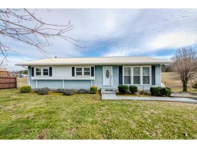 Johnson City Single Family Home For Sale: 1210 Bairvette Ave