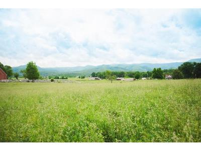Washington-Tn County Residential Lots & Land For Sale: Greene County Line Rd.