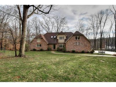 Kingsport Single Family Home For Sale: 216 Timberland Circle