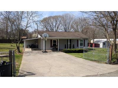 Kingsport Single Family Home For Sale: 316 Archcrest