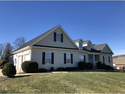 Bristol VA Single Family Home For Sale: $348,850