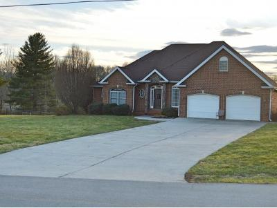 Piney Flats Single Family Home For Sale: 351 Hunting Hill Road #1