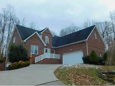 Kingsport Single Family Home For Sale: 116 Pickens Ct
