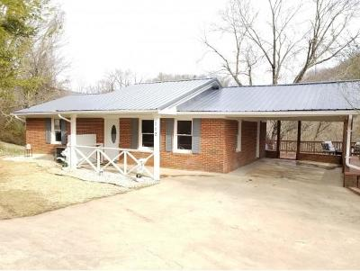 Elizabethton Single Family Home For Sale: 112 Borderview Ave