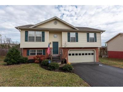Jonesborough Single Family Home For Sale: 1312 Meadow Creek Lane
