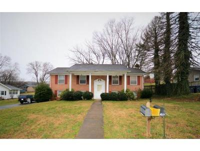 Kingsport Single Family Home For Sale: 4538 Ronald Drive