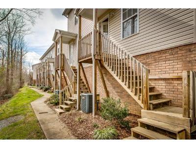 Johnson City TN Condo/Townhouse For Sale: $125,000