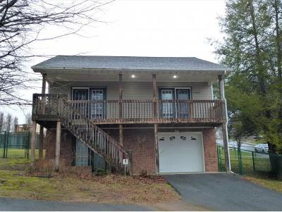 Johnson City Single Family Home For Sale: 2906 Antioch Road