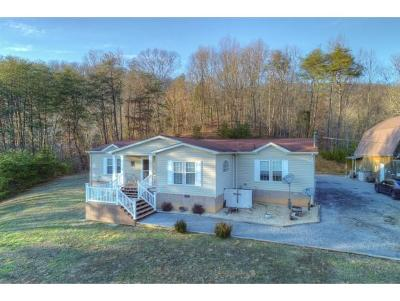 Rogersville Single Family Home For Sale: 158 Pond Rd