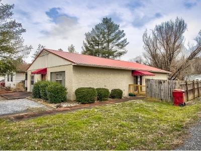 Johnson City Multi Family Home For Sale: 1751 Todd Drive