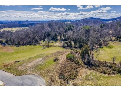 Washington-Tn County Residential Lots & Land For Sale: 809 Victoria Lee Way