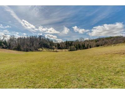 Washington-Tn County Residential Lots & Land For Sale: 785 Victoria Lee Way